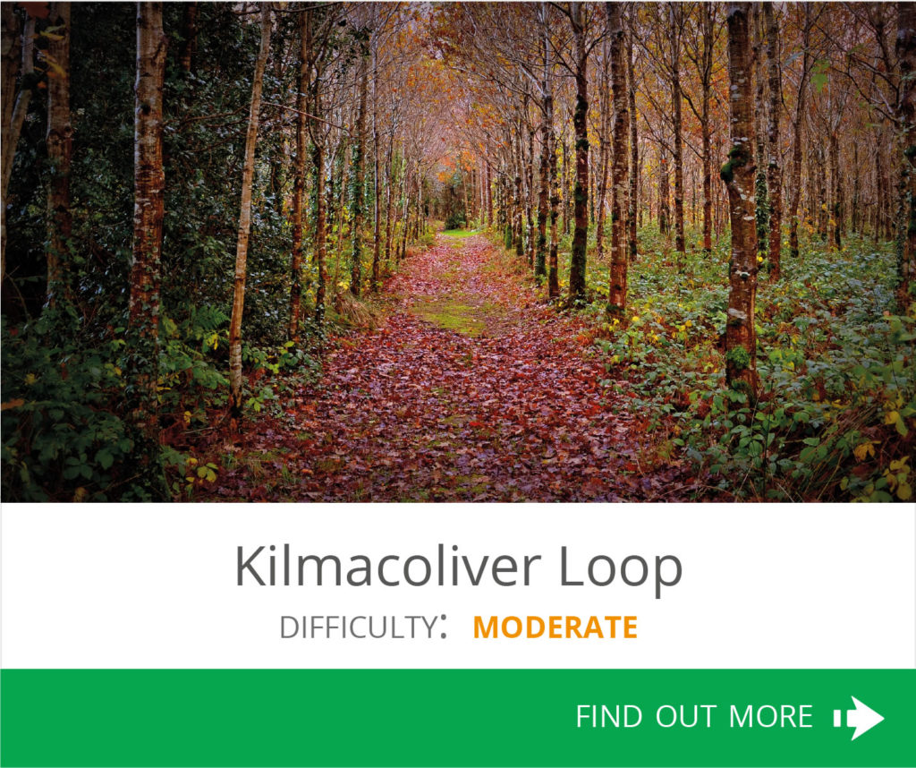 Kilmacoliver Loop
