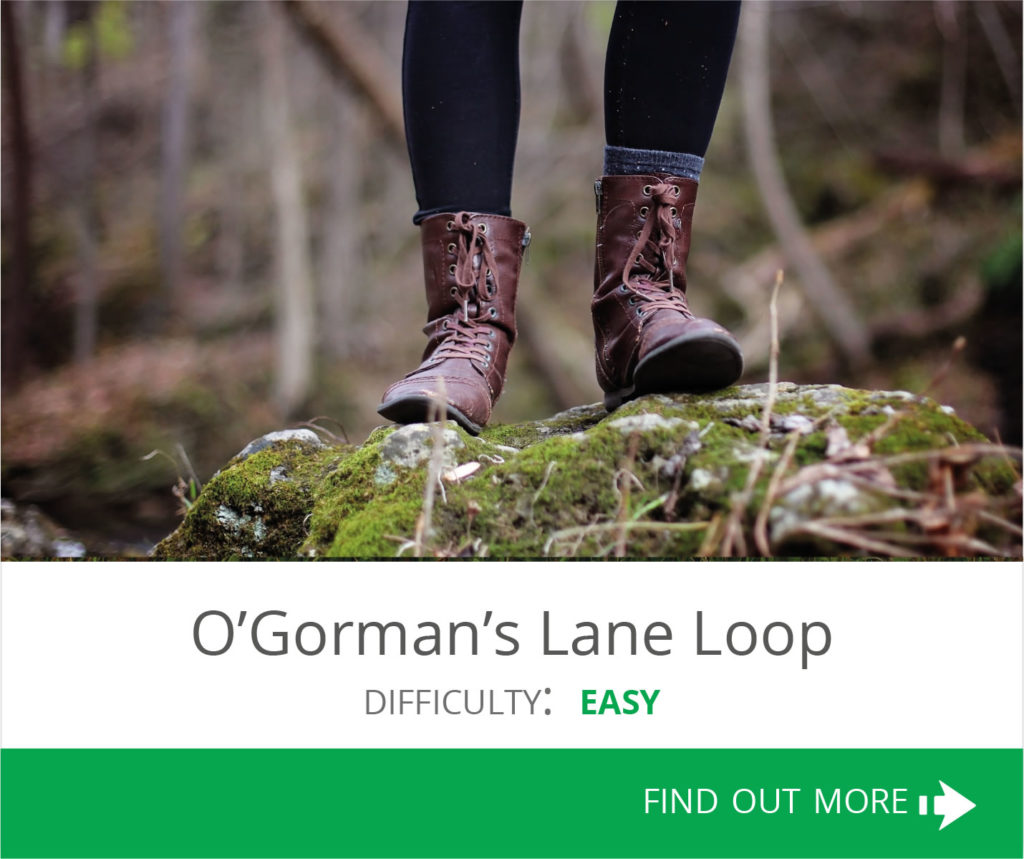 O'Gormans Lane
