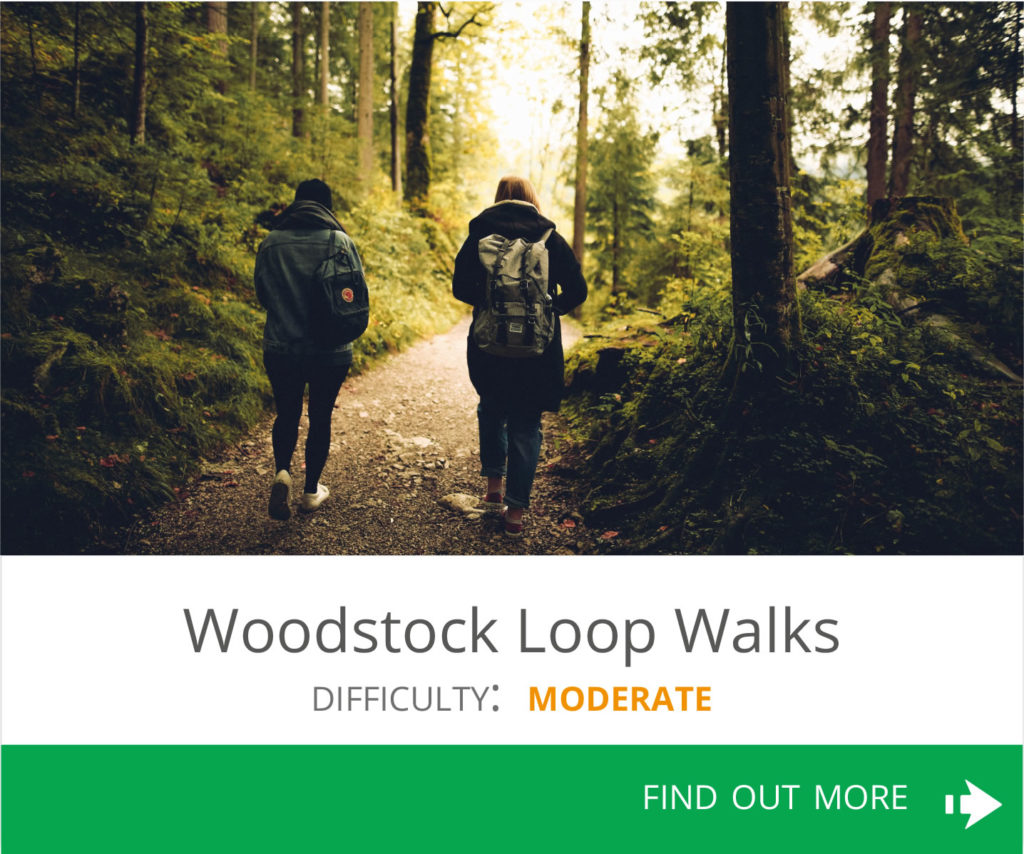 Woodstock Loop Walk