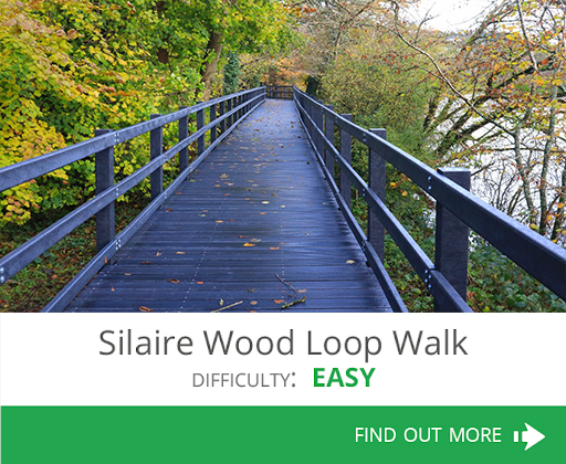 Silaire Wood Loop Walk