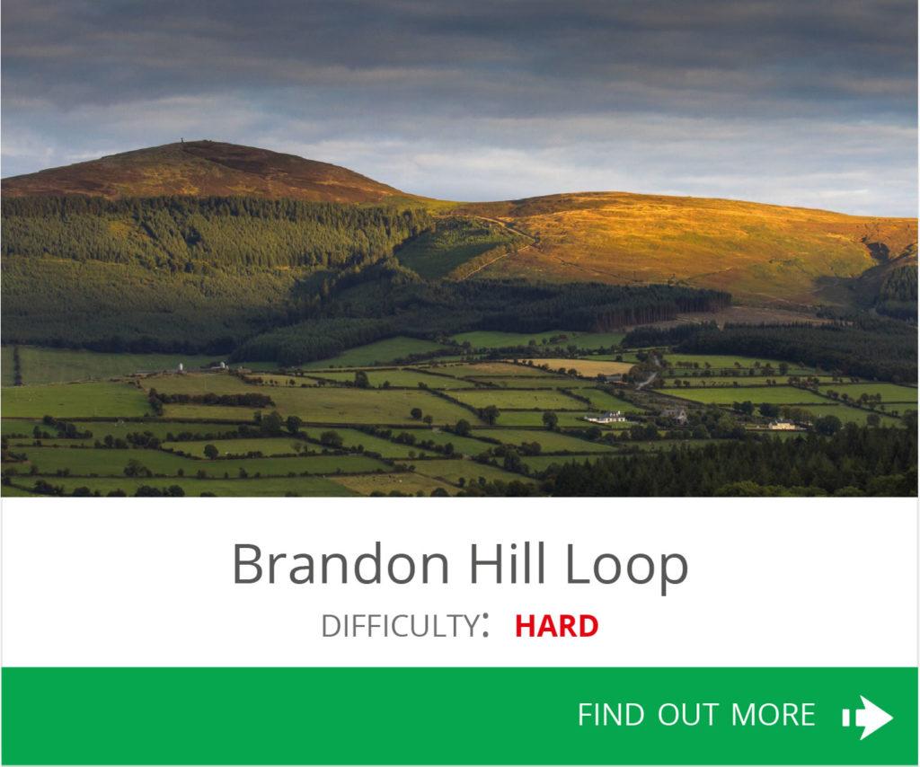 Brandon Hill