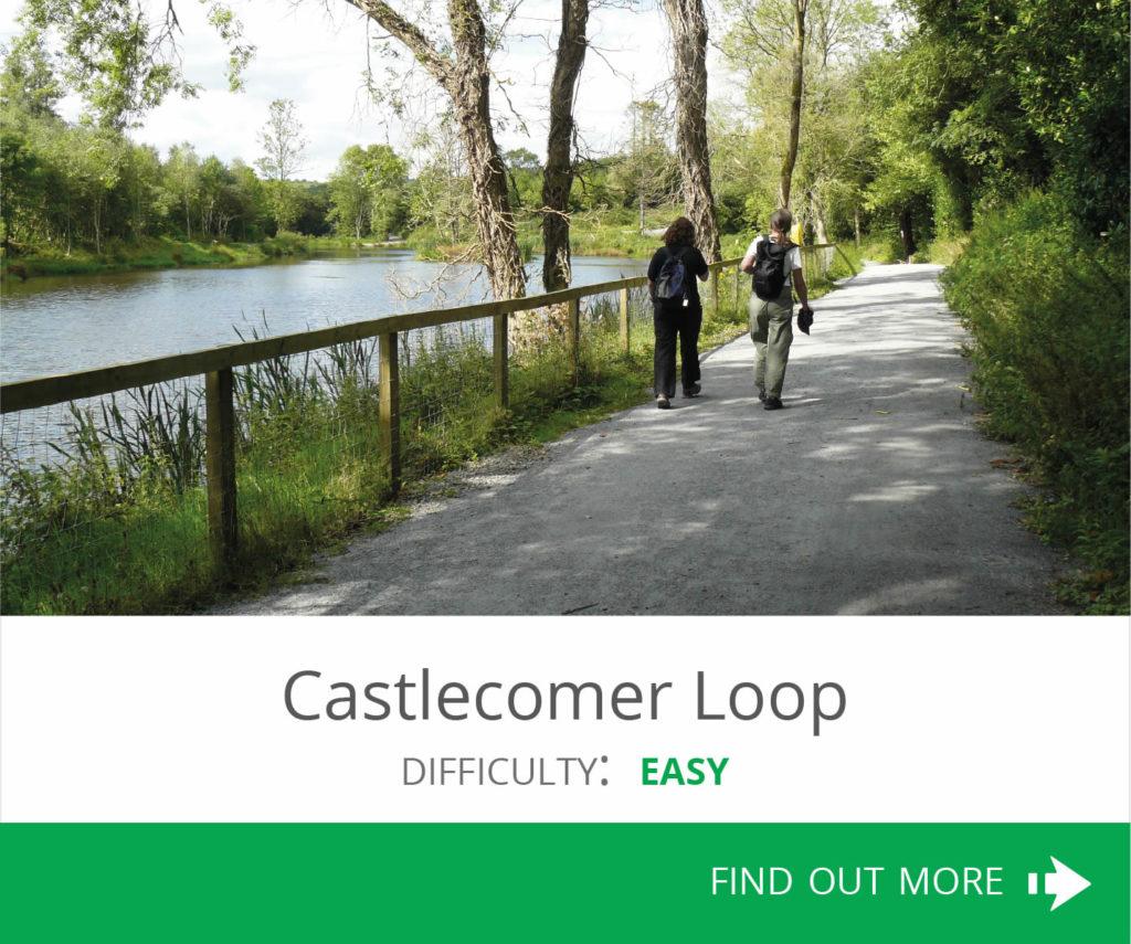 Castlecomer Loop