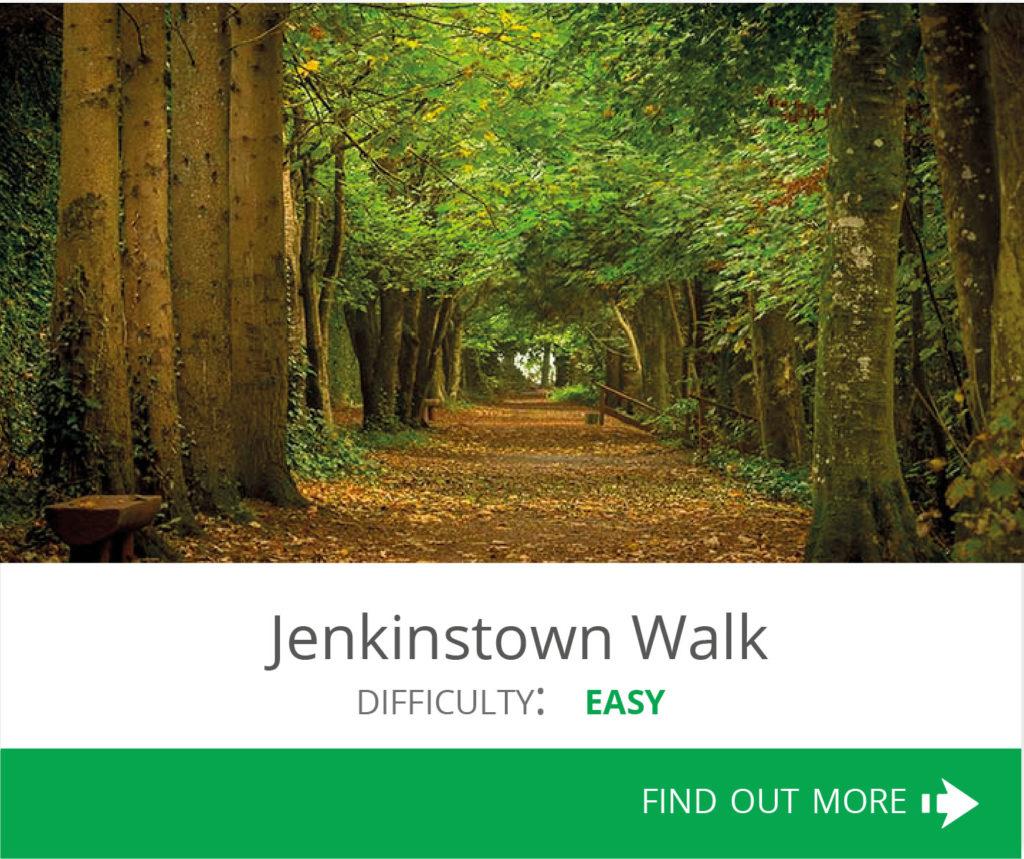 Jenkinstown Walk