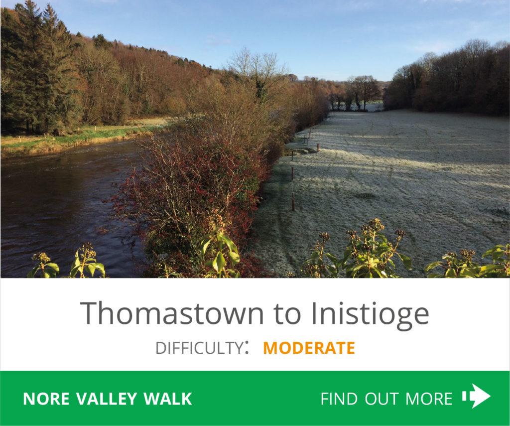 Thomastown to Inistioge
