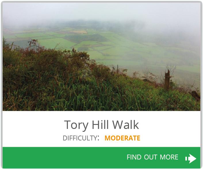 Tory Hill Walk