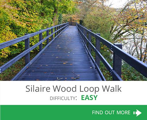 Silaire Wood Loop Walk